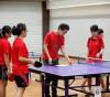 この画像は、サイトの記事「卓球おすすめ動画 ペンツブ卓球知恵袋 YouTubeチャンネル『[卓球動画チャンネル]WRM-TV』のご紹介!」のイメージ写真画像として利用しています。